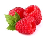 Ripe raspberry with leaf — Stockfoto