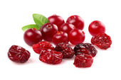 Dried and fresh cranberry — Stock Photo