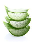 Aloe vera slice — Stock Photo