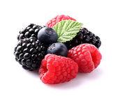 Doce berry em closeup — Foto Stock