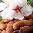 Stock Photo: Almonds kernel in wooden spoon