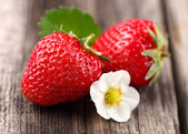 Fresh strawberry on a wooden background — Stock Photo