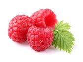 Raspberry with leaf — Stock Photo