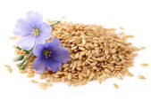Flax seeds with flowers — Stok fotoğraf