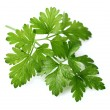 Fresh parsley — Stock Photo #26536569