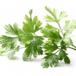 Stockfoto: Parsley spice