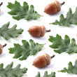 Collage from acorns with leaves — Stock Photo