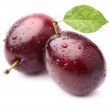 Ripe plums with leaf — Stock Photo
