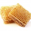 Honeycombs in closeup — Stock Photo