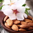 Stock Photo: Almonds kernels with flowers