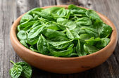 Baby spinach in a wooden plate — Stock Photo