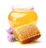 Honey with clover — Stock Photo