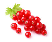 Juicy currant with leaf — Stock Photo