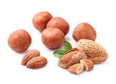 Marzipan with almonds nuts — Stock Photo