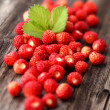 Wild strawberries — Stock Photo #48952293