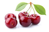Sweet cherry with leaves  — Stock Photo