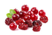 Fresh and dried cranberry — Stock Photo
