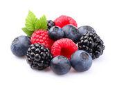 Fresh berry — Stock Photo