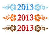 Vector kleurrijke aloha 2013 tekst met hibiscus — Stockvector