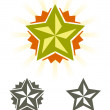 Set of vector stars  — Stock Vector
