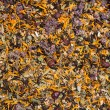 Texture of herbal tea  — Stock Photo