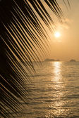 Tropical sunset over the sea — Stock Photo