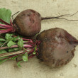 Stock Photo: Beets with tops on sacking