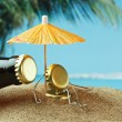 Stock Photo: Funny bottle cork on a sandy beach