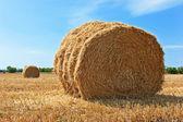 Stosy słomy na pochyłym pole pszenicy — Zdjęcie stockowe