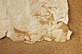 Scrap of old torn paper on a sandy beach — Stock Photo
