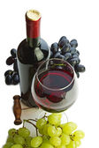 Bottle of wine and grapes isolated — Stock Photo