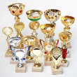 Many sports awards  on a white background — Foto Stock
