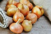 Zwiebeln auf einem holzbrett — Stockfoto