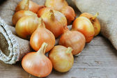 Onions on a wooden board — Stock Photo