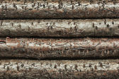 Background of the old logs — Stock Photo