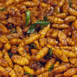 Fried silkworms at night market Thailand - Stock Photo