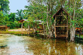 Old wooden house on the lake in the tropics — Stock Photo