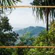 Tropical landscape in bamboo frame  Phuket Thailand — Stock Photo