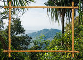 Tropical landscape in bamboo frame Phuket Thailand — Stock Photo