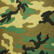 Military texture camouflage background — Stock Photo #22051891