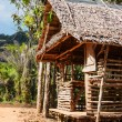 Old wooden house in tropics — Stock fotografie #22158215