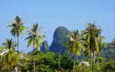 Phi phi island Krabi Province, Thailand — Stock Photo