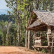 Old wooden house in tropics — Stockfoto #22774856