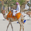 Bedouin riding a camel on the beach in Dubai - Stock Photo
