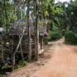 Old wooden house in tropics — Stock fotografie #24313801