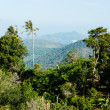 Panoramic view from the hill Big Buddha in Phuket Thailand - Stockfoto