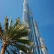 Burj Khalifa - the world's tallest tower at Downtown Burj Dubai - Stock Photo