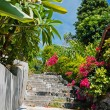 Stone stairs in a tropical garden - Stock Photo