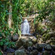 Waterfall in the tropical jungles of South East Asia — Stock Photo #25281675