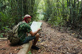 Travelling man sitting and looking at the map in the bamboo fore — Stock Photo